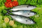 use any white fish
